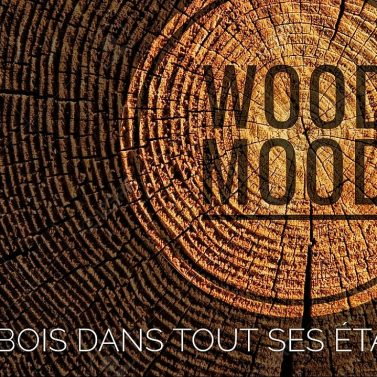 montre bois wood-mood